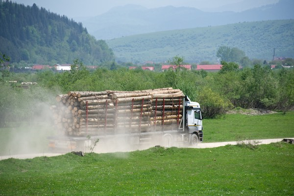 18 logging truck