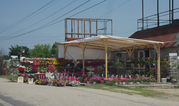 2 flower stand