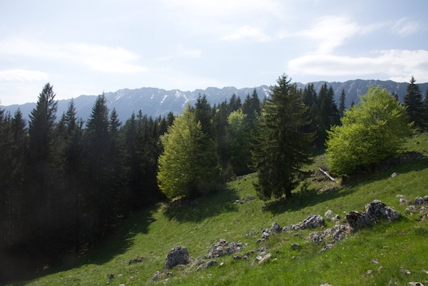 24 mountain ridge