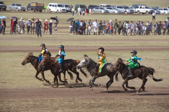 Race for Mongol horse hybrids