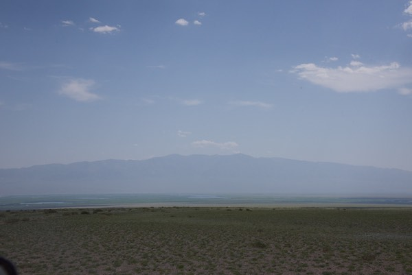 Khar Us Nuur reedbeds with Jargalant Hairkhan Uul in the background