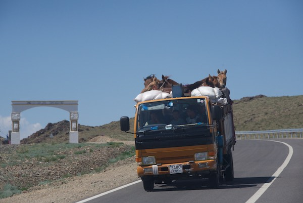 33. truck with horses