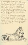 Mongol horse foal, Erdenent (from a photo)