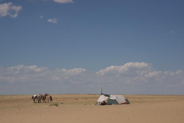 Local herders