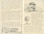 Rocks and trees, Ikh Nartiin Chuluu