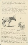 Race horses, Erdenet