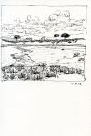 8-wetland