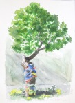 Khadag tree, Jargalant Hairkhan Uul, Khar Us Nuur National Park