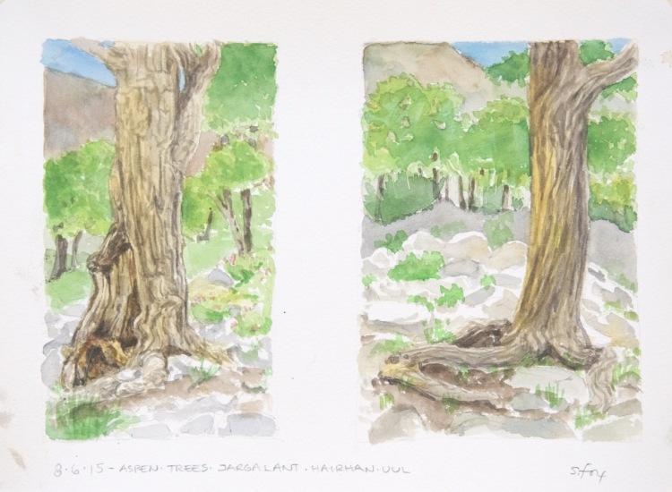 Aspen trees, Jargalant Hairkhan Uul, Khar Us Nuur National Park