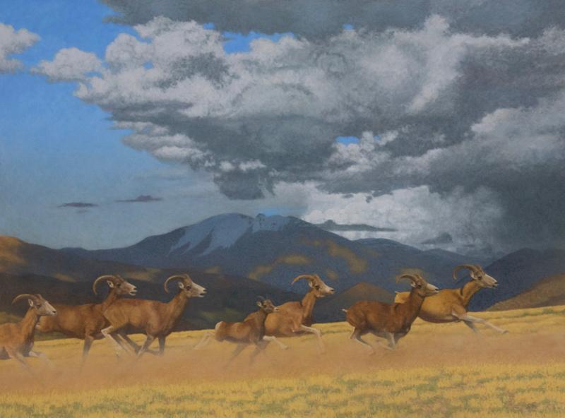 """On the Run (Altai Argali, Hokh Serkhiin Nuruu, Mongolia)  oil  36x48"" $9500"