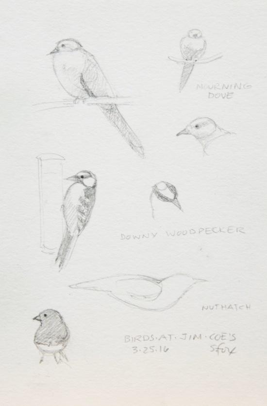 Pencil birds