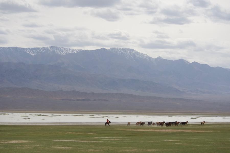 26. lake, herder