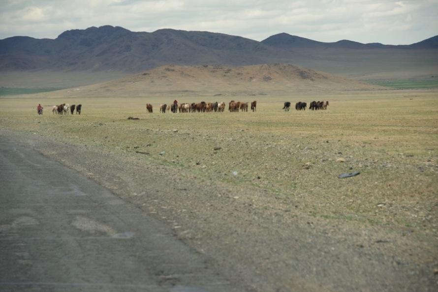 36-horses-herders