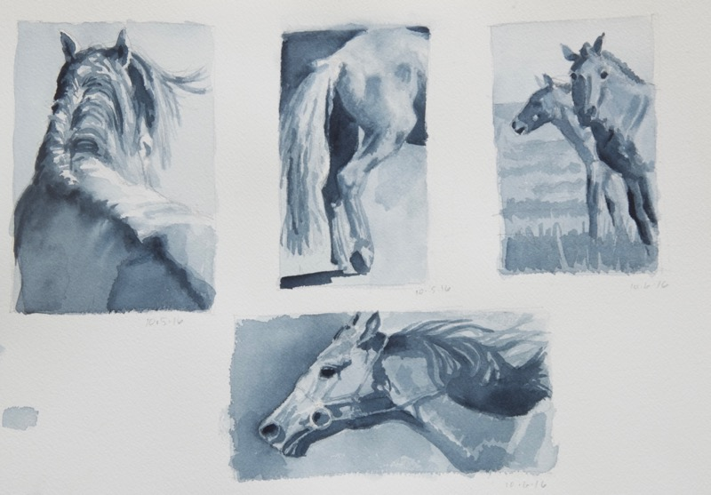 gs-horses