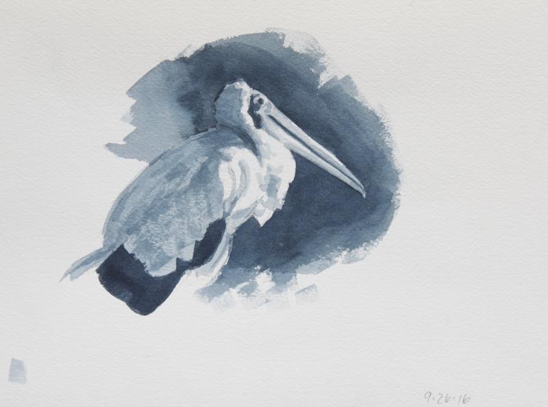 gs-stork