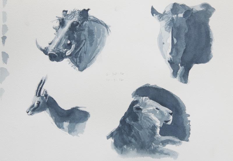 gs-warthog-rhino-gazelle-lion