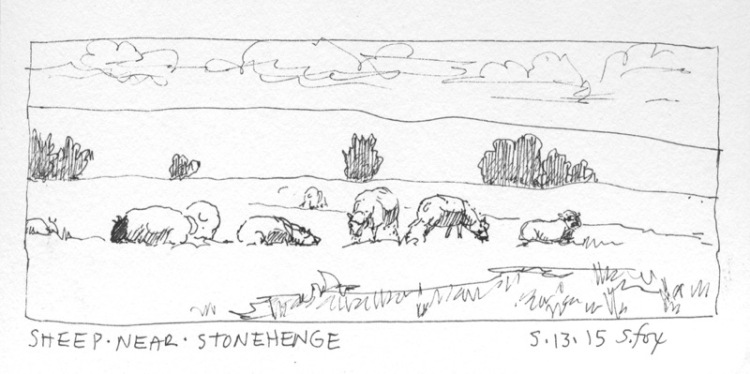 sheep-near-stonehenge