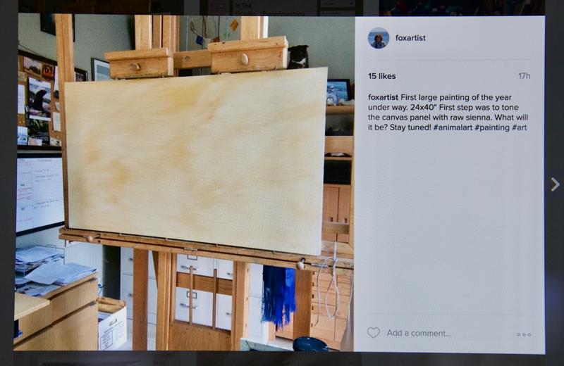 blank-canvas