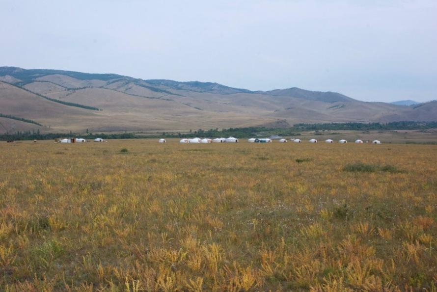 jalman-meadows