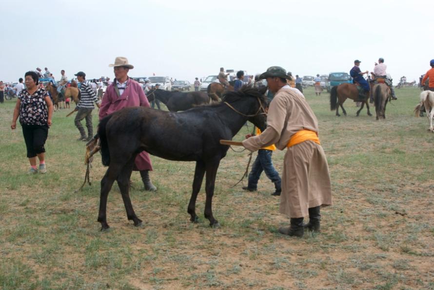 mongolia2010-07-25-23-16-46