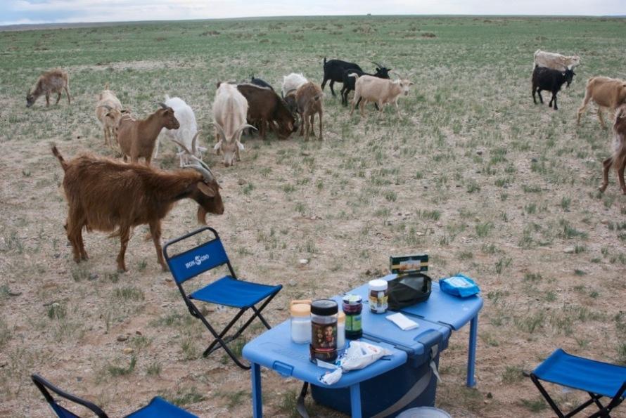 Mongolia2010-07-17-14-36-44 - Version 2
