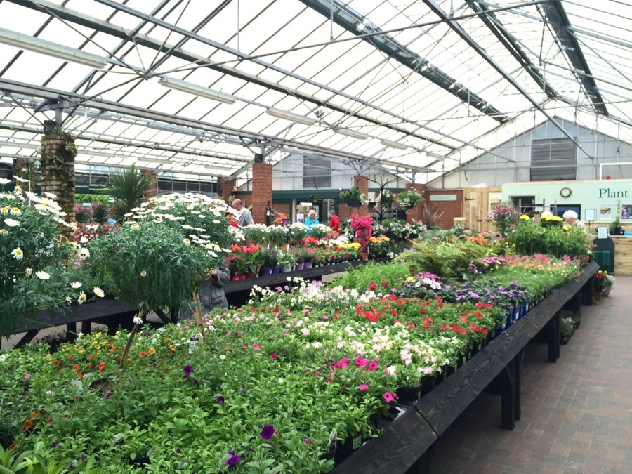 garden shop 14