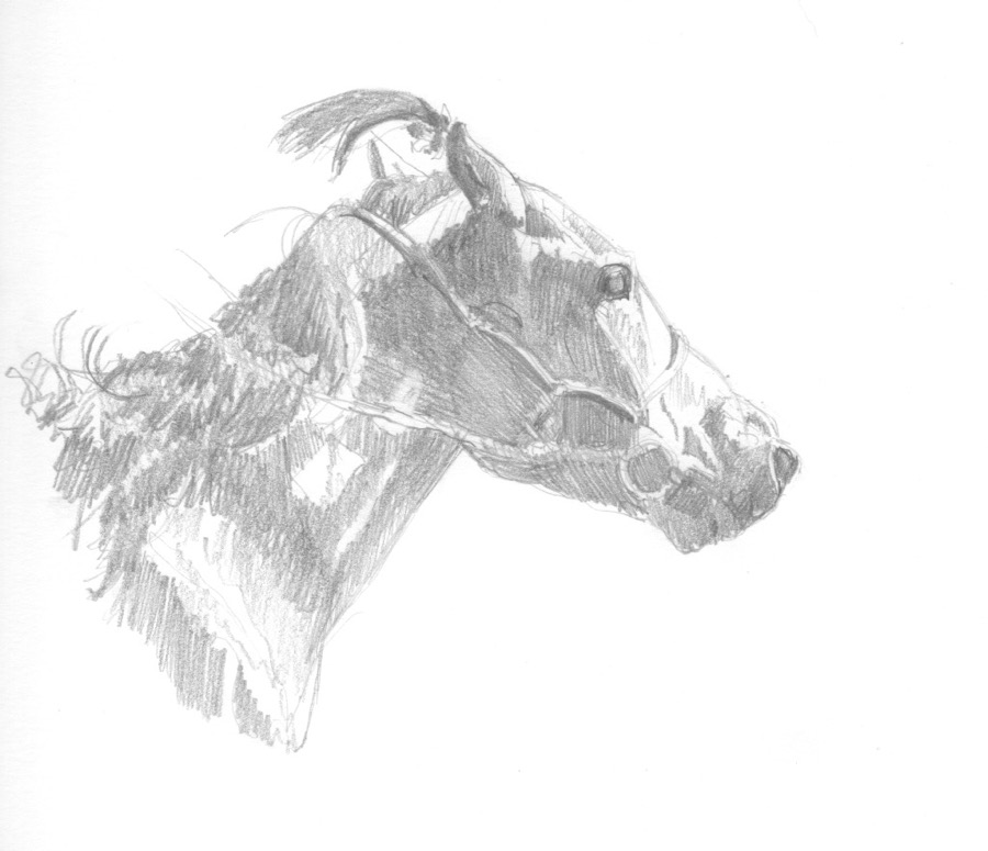 Mongol racehorse #1