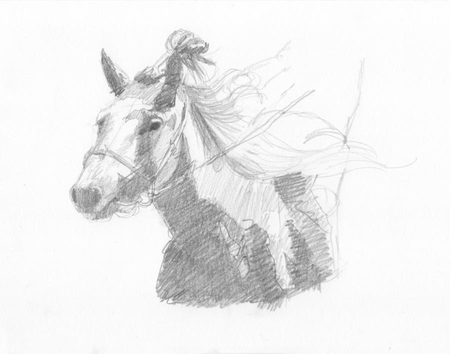 Mongol racehorse #2