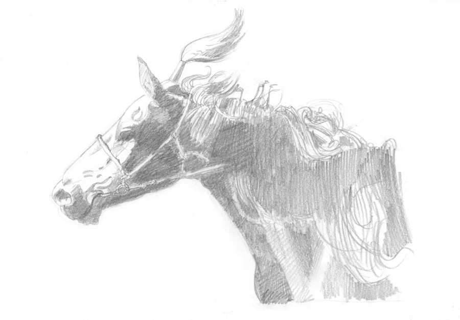 Mongol racehorse #3