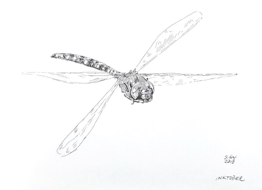 "Inktober 19 ""Dragonfly"""