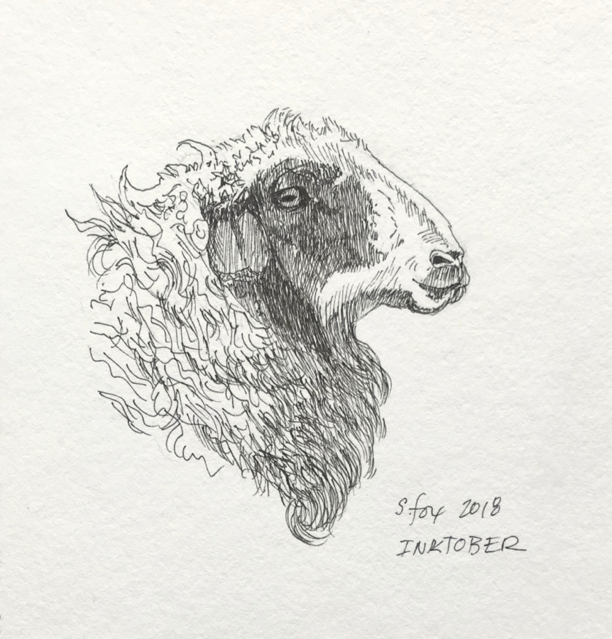 Inktober 4- Mongolian sheep